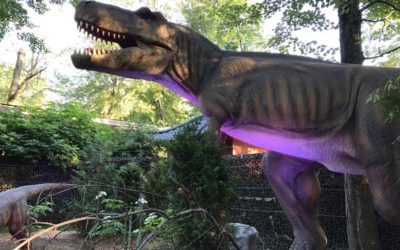 The Grandiose Dinosaur Exhibit Now at Granby Zoo
